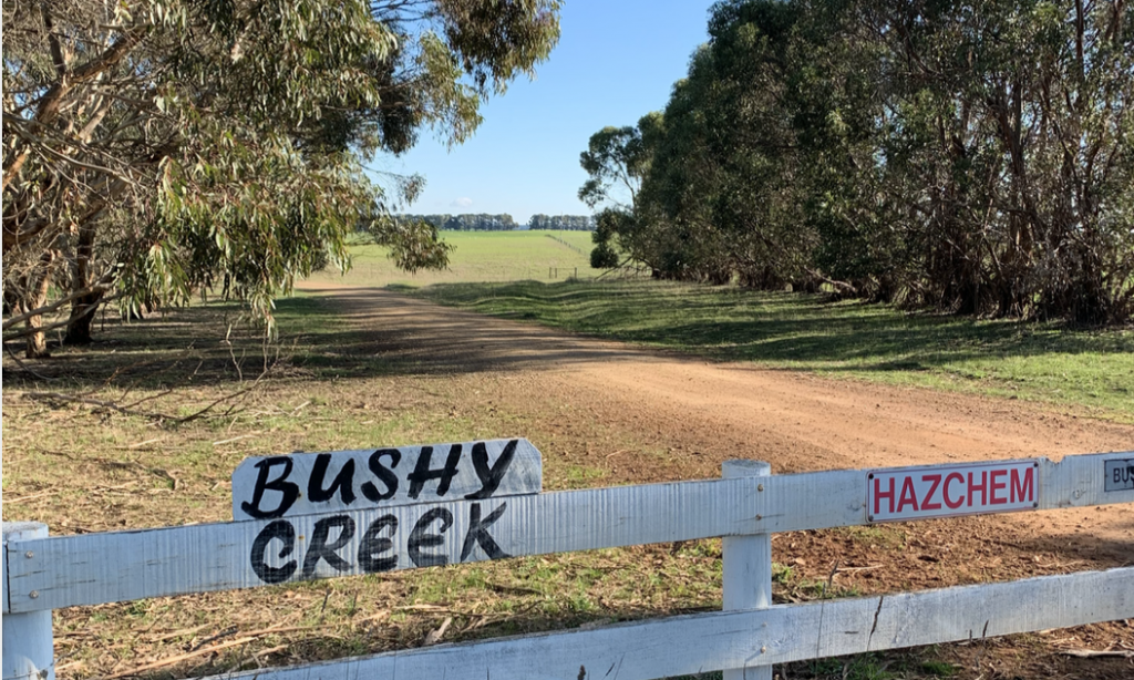 Bushy Creek Wind Farm - Newen Australian